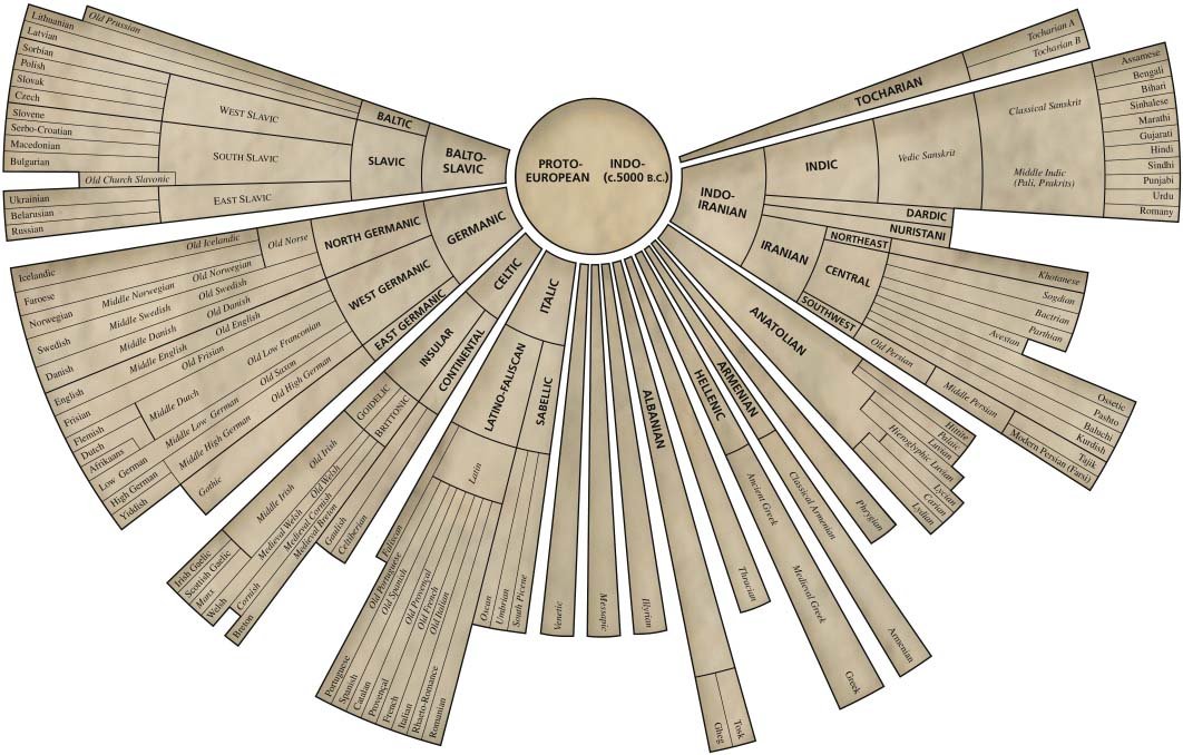 Indo-European Language Tree Infographic