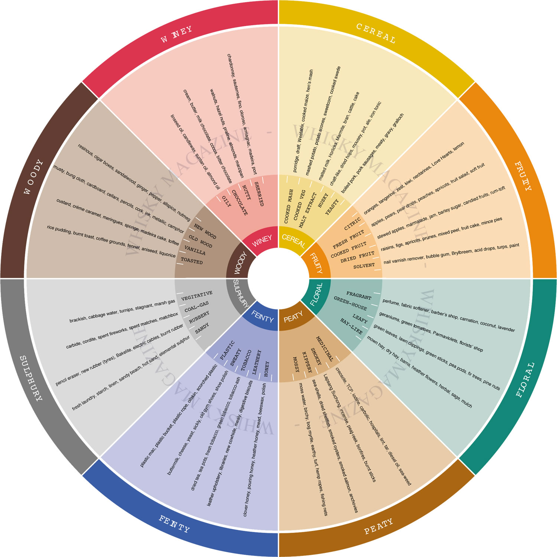 whisky wheel infographic